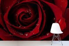 Red Rose Droplet Mural Wallpaper