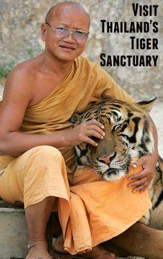 Thailand Tiger Sanctuary #travelbucketlist