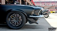 Who let the cage open ? - Seriously aggressive looking Mustang Beast
