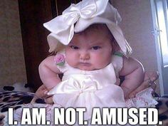 Hope you enjoy this collection of the funniest baby memes we could find. Some seriously laugh out loud stuff here. We think numbers 55 and 79 are laugh out loud. Funny Cartoon Jokes, Funny Baby Memes, Funny Kids, Funny Cute, Cute Kids, Cute Babies, Hilarious, Baby Humor, Fall Funny