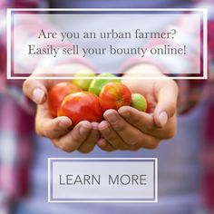 Calling all city-dwelling farmers! Too much kale? With Barn2Door you can have an online farm store and your extra food to neighbors! Why not?