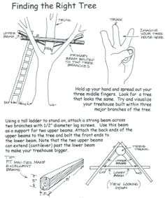 How To Build A Tree House Wilderness Survival Net