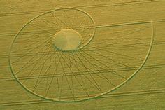 Fibonacci Spiral, Bradbury Castle, UK Crop Circle
