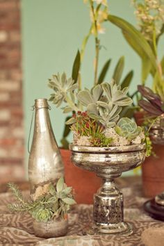 pedestal vase with succulents and moss, mercury glass