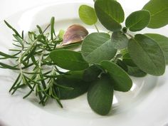 Natural Rosemary and Sage Dye for White Hair – Recipe and Application - http://topnaturalremedies.net/home-remedies/natural-rosemary-sage-dye-white-hair-recipe-application/