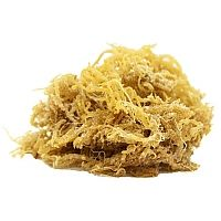 Irish Moss - traditionally an herbal remedy in Ireland, and a fantastic thickening agent for jellies, puddings, and soups.