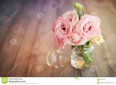 Colorful Still Life With Roses In Glass Vase Stock Photo - Image: 48024411