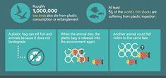 Schockierende Infografik: Wie Plastikmüll unsere Meere zerstört (Bild: © Custom Made (Ausschnitt))