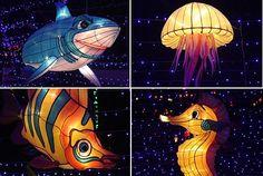 Lantern Festival in Hat Yai Fish Lanterns, Chinese Lanterns, Paper Lanterns, Tomorrowland Festival, Sculpture Art, Sculptures, Hat Yai, Chinese Lantern Festival, Festivals Around The World