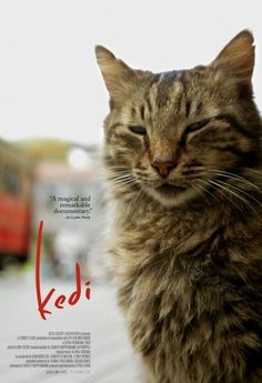 Kedi (2017-Documentary)