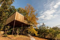 Tree house (Furnas Cabin) - Treehouses for Rent in Outes, Galicia, Spain Cabana, Ideas De Cabina, Deciduous Trees, Star Wars, House Styles, Treehouses, Building, Home Decor, Photos