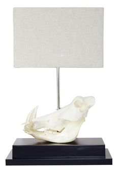 Buy Deluxe Warthog Skull Lamp by Ngala Trading Co - Made-to-Order designer Lighting from Dering Hall's collection of Contemporary Rustic / Folk Mid-Century / Modern Organic Table Lighting.