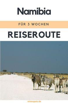 Abenteuer pur – Namibia Reiseroute für 3 Wochen #namibia #reiseroute