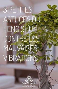 3 astuces Feng Shui contre les mauvaises vibrations.