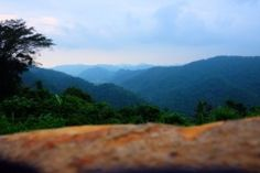 Khao Yai National Park Viewpoint   Weekend getaway📍Escape the busy city 📍What to see in Thailand 📍 Beautiful landscape 📍 Nature in Thailand