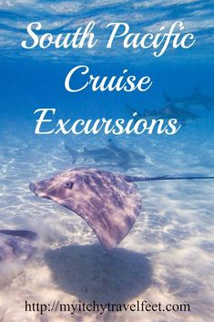 South Pacific cruise excursions for your next boomer travel adventure. Read our tips on what to do when your cruise ship arrives in the South Pacific. Cruise Excursions, Cruise Destinations, Shore Excursions, Cruise Travel, Cruise Vacation, Vacation Trips, Honeymoon Cruises, Beach Vacations, Vacation Ideas