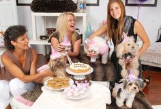How to throw a birthday party for your dog. Tips and tricks on planning a party for your dog. #dogpartytips #dogbirthdayparty