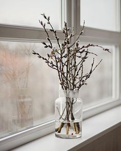 #allthebeautifulthings #pussywillow #window #waitingforspring #cozywinter #february #slowliving #hygge