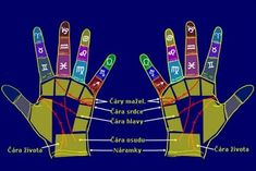 Palmistry begins with the obvious and proceeds, by innumerable intricate steps of judgment and interpretation, to extreme details of the palm. Conclusions can be made from a palmistry reading that can provide you with answers to questions you have. Reiki Meditation, Meditation Music, Mindfulness Meditation, Palm Reading Charts, Palmistry Reading, Reading For Beginners, Handwriting Analysis, How Many Kids