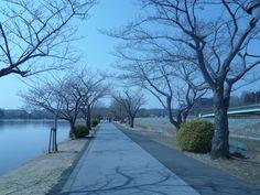 Kairaku-en, l'un des trois plus beaux parcs du Japon