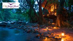 One night stay at Ella Jungle Resort, Ella | Mydeal.lk | Best Deals in Sri Lanka