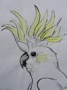 Cockatoo - OrJAZmic Designs Drawing Birds Easy, Parrot Drawing, Nature Drawing, Realistic Animal Drawings, Bird Drawings, Easy Drawings, Bird Sketch, Art N Craft, Mini Paintings