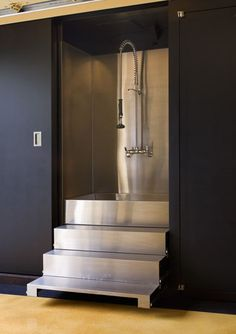 Stainless steel dog bath stairs retract into garage built-in