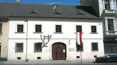Музей-квартира Франца Шуберта в Вене (фото)   на сегодняшний день является музеем. Дом представляет собой двухэтажную постройку без лишних элементов декора. Именно здесь 31 января 1797 года появился на свет великий австрийский композитор