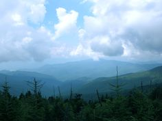 The view from Clingman's Dome. Tennessee
