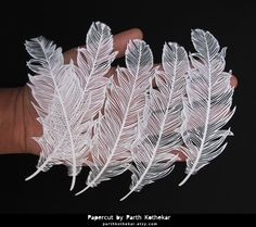 Papercut - Papercutting - Paper art - Feathers by ParthKothekar.deviantart.com on @DeviantArt