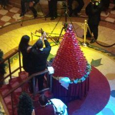 sisters_in_travel-the_travel-alto_mar-ruby_princess-the_piazza-noite_de_gala-torre_de_champagne