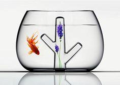 Amazon.com : Holuck Mini fish bowl