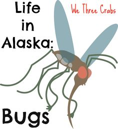 Secretly I was hoping to move up here to find zero bugs. Haha. As I have done some research there are actually 151 different kinds of bugs that can be found here in Alaska. Today i am talking about them. Life in Alaska: Bugs Bugs Bugs : We Three Crabs
