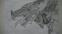 Dragon drawing with just a HB pencil.