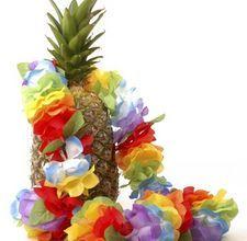 hawaiian activities for kids
