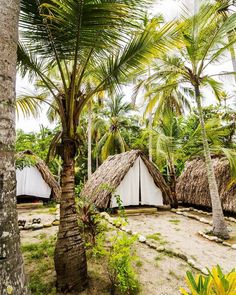 Glamping, Resort Plan, Bamboo House Design, A Frame Tent, Hut House, Beach Place, Water House, Tiki Hut, Outdoor Cafe