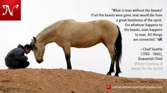 What is man without the beasts? If all the beasts were gone, man would die from a great loneliness of the spirit. For whatever happens to the beasts, soon happens to man. All things are connected. —Chief Seattle (1780 - 1866), Duwamish Chief [Photo Courtesy of Horses for the Spirit