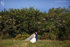 Beautiful mountain wine estate with magical venues and lots of accommodation for truly special country weddings, less than an hour from Cape Town. Wedding Venues, Wedding Ideas, Farms, Cape, Africa, Weddings, Country, Wedding Dresses, Beautiful