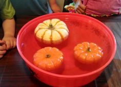 Pumpkin Science for Preschoolers/Kindergarten from Preschool Powol Packets