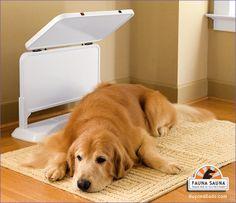 Sauna pour chiens - Dog sauna