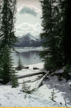 4. Природа. Нашел сразу, ввел правильный поиск.   Горы, лес, вода, снег-самое любимое в природе.