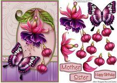 Card Front Fuchsia Pea
