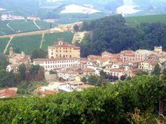 Barolo with castle