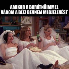 Vampire, Nasa, Bff, Jokes, Wedding Dresses, Harry Potter, Humor, Friends, Bride Dresses