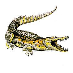 Il primo disegno del coccodrillo fu realizzato nel 1927 da Robert George, grande amico di René Lacoste. Da allora diventò il logo ufficiale di tutti i prodotti #Lacoste