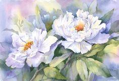 Watercolor - Rachel Mcnaughton - 057 - White Peonies.jpg