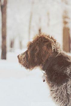 Im waiting for you by Gabriela Tulian, via Flickr