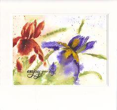Les 2 Iris