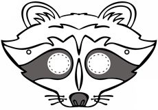 Various Animals - Raccoon, Skunks, bats.  Activities and info