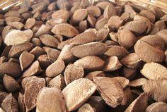 Para ořechy jsou výtečnou pochoutkou a ještě ke všemu zdravou. A studie to skutečně potvrzují.